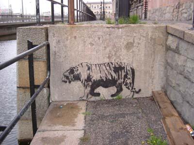 En trött gammal tiger